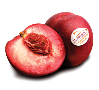 Sicoly product image Blood peach and nectavigne ®